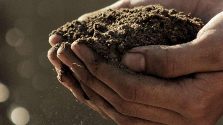 Vegan B12 Deficiency Soil